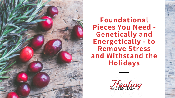 Foundational Pieces You Need – Genetically And Energetically – To Remove Stress And Withstand The Holidays